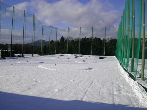 2011.1.1新雪.jpg
